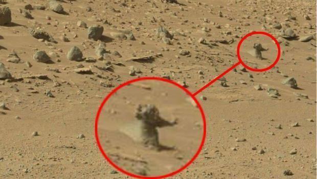 Auf dem Mars wurde Leben gesichtet!!!