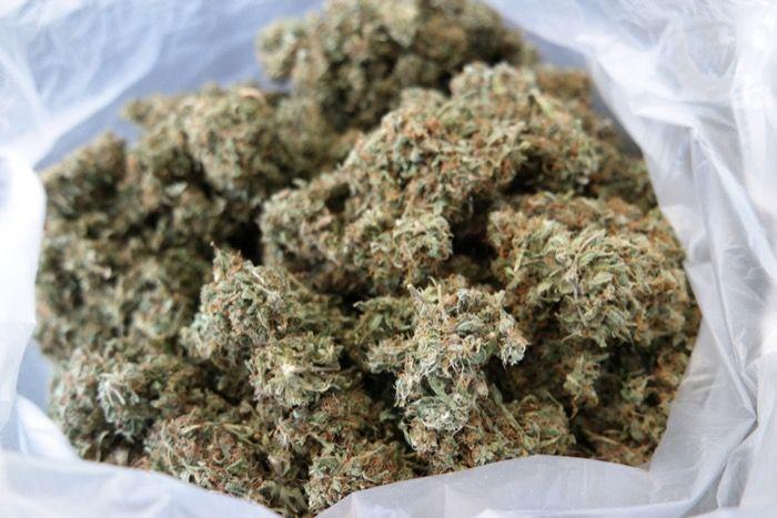 V4rrd mit mehr als 50 Gramm Marihuana erwischt