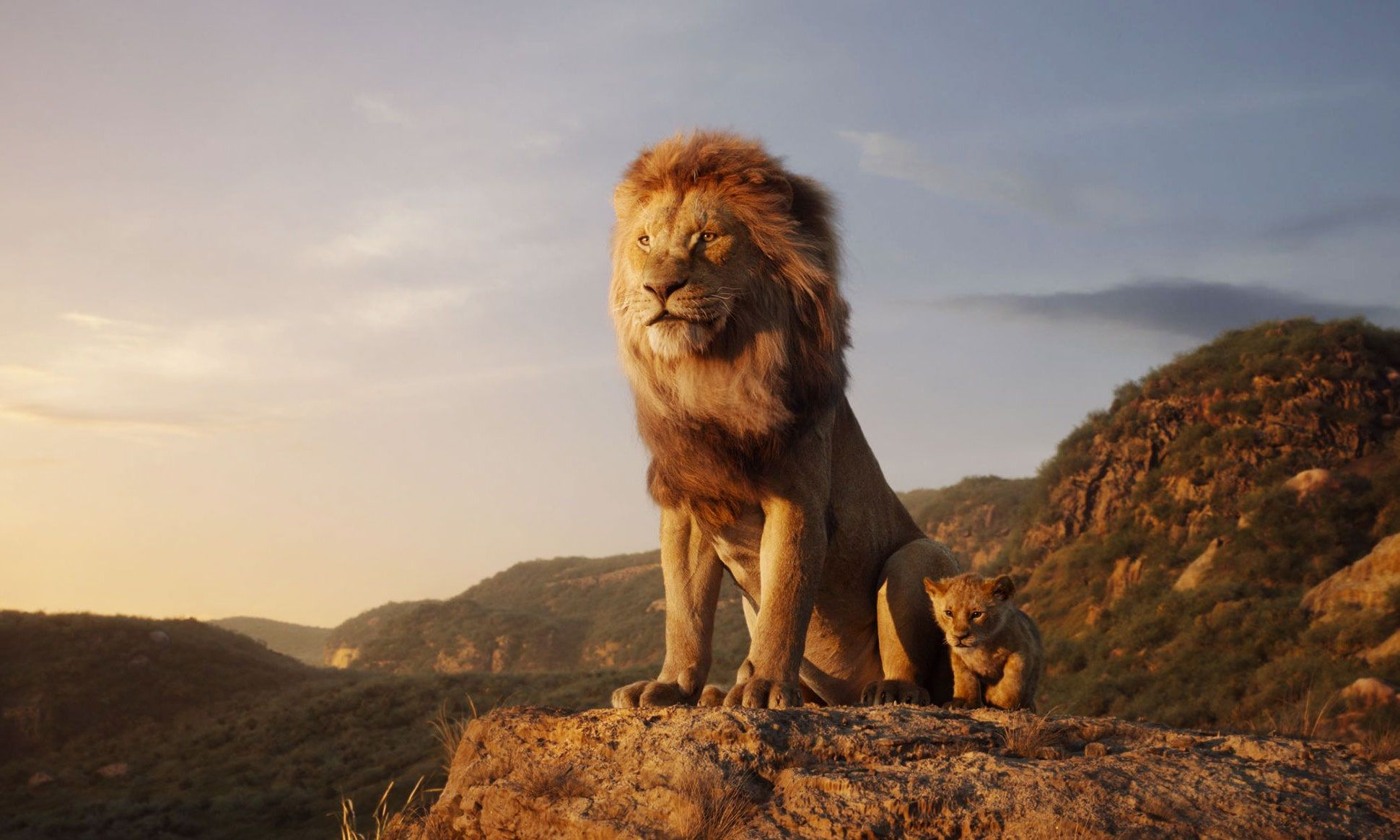 Löwe entwischt